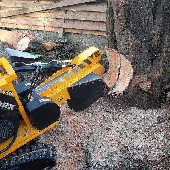 Tree Stump Services